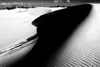 thurra-dunes-9438